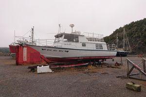 1985 Cruiser Custom